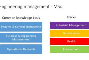 Engineering Management - Cosa si studia